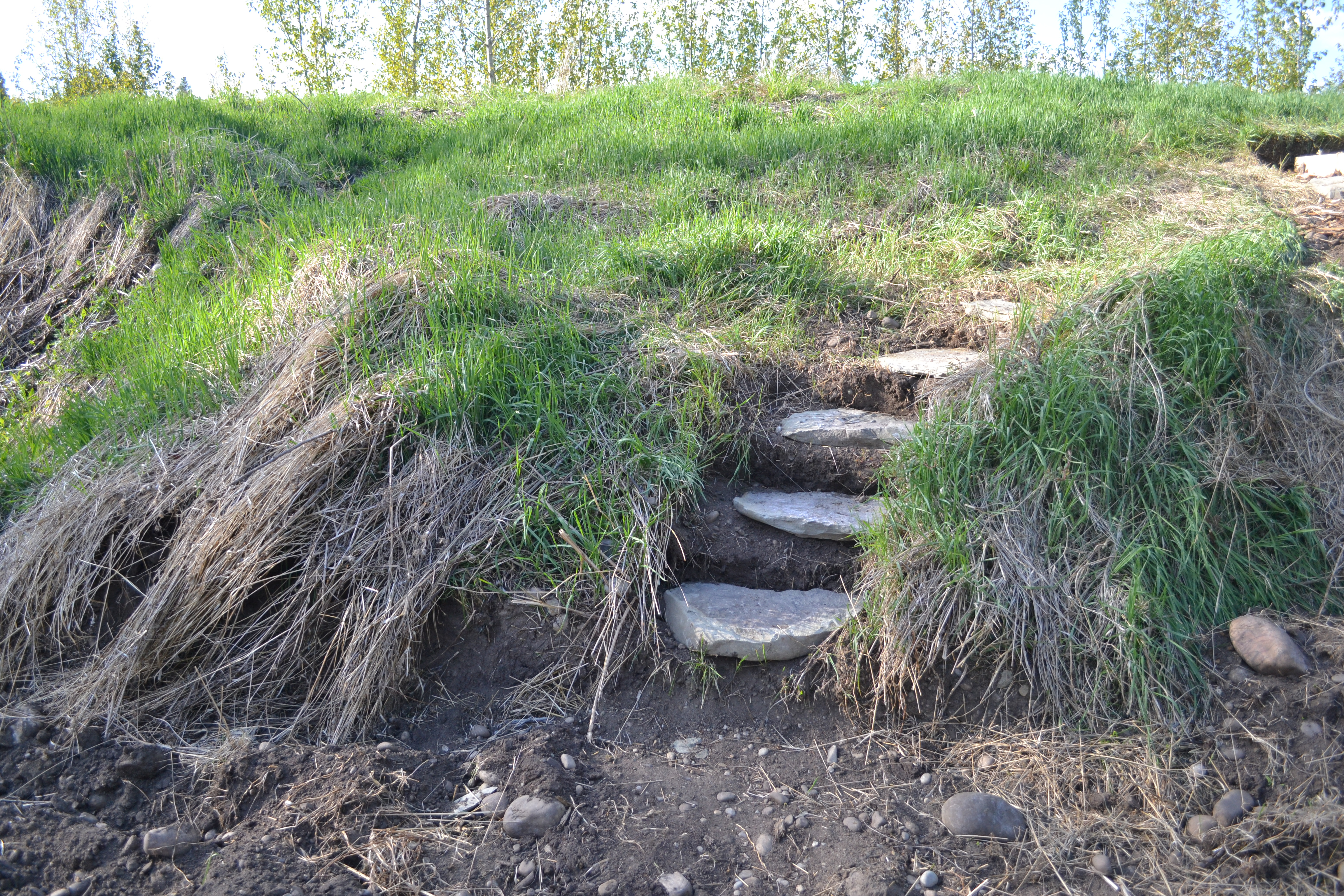 Diy build wood steps up a hill pdf download diy wood fired for Landscaping rocks on a hill